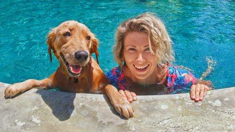 Mensch und Hund im Pool